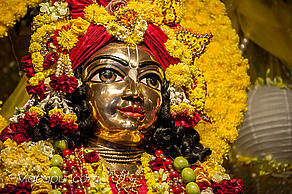 Lord Nityananda's Appearance Day: A Most Wonderful Opportunity to Obtain All Your Desires