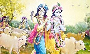 Balarama brings Krishna!