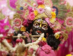 Vrindavan Diary 2014 - Part 6
